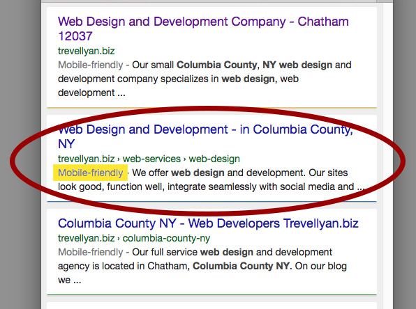 google launches mobile friendly tags in search result