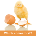 """Baby chick that has just hatched with the words """"Which comes first"""" underneath"""