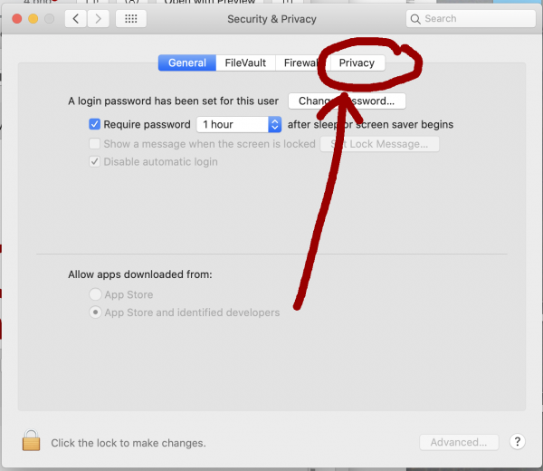 Security and Privacy panel of ]System Preferences opened and Privacy circled