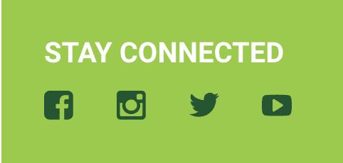 Screenshot of Subway's social media profile links. Facebook, Instagram, Twitter and YouTube